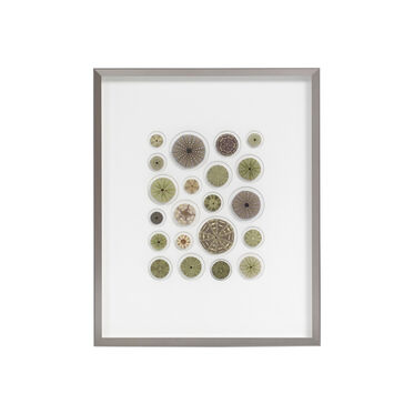 NATURAL GREEN URCHIN MOSAIC WALL ART, , hi-res