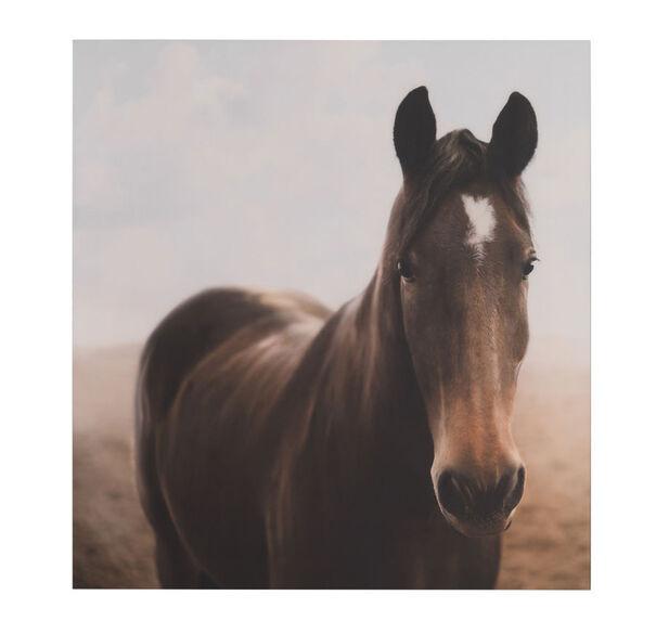 HORSE 1 WALL ART, , hi-res