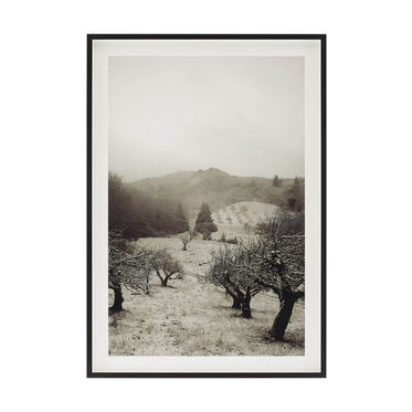 MONOCHROMATIC LANDSCAPES II, , hi-res