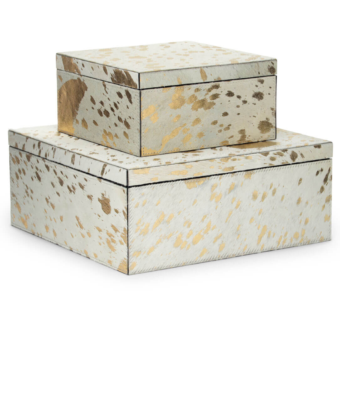 Gold on White Hide Boxes