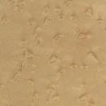 Casegood finish swatch in Birdseye Maple