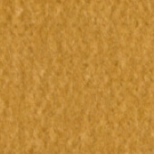 Camel swatch example
