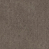 Taupe swatch example